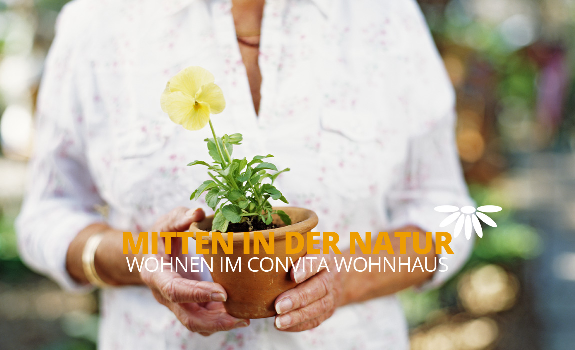 Senior woman in garden holding pot plant, mid section